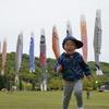 【子どもの日】高田屋嘉兵衛公園には大きいこいのぼりが泳いでいます
