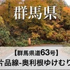 【車載動画】群馬県道63号 水上片品線 (奥利根ゆけむり街道)