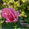 家の庭を探検!季節の植物~意外とにぎやかな秋の庭~