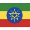 《圧倒的果実感》エチオピアのコーヒー