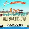 【ワイルドバンチ2017】WILD BUNCH FEST. 2017~写真多めの感想と注意点~