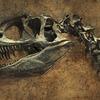 ノドサウルスの最後の食事