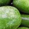 【冬瓜徹底解析!】栄養価、美容効果、種類、旬の時期、選び方、保存方法は??