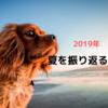 【2019】夏を振り返る【令和元年】