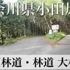 【動画】神奈川県小田原市 舟原林道・林道 大林線