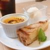 橋本市で気になる【おすすめ】のカフェ人気ベスト8選をご紹介!