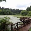山形県)休暇村庄内羽黒、月山ビジターセンター周辺散策。