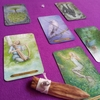 【Forest of Enchantment】魔法の森でインタビュー!!