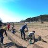 開墾の準備🌱今こそ、土と繋がる生き方を🌱