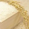 Tポイントでお米を購入