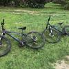 自転車でイルデパンの観光!
