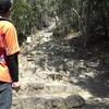 ゆる登山 岩戸山