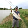 タイでバラマンディ釣りならMongkol Fishing Park。スペシャルポンドで良型連発!