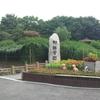 韓国ソウルにある、オススメ公園part1 散歩もゆったりも!!