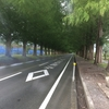 滋賀県遠征ツーリング  琵琶湖一周の旅