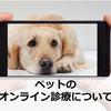 【2020年3月】ペットのオンライン診療について、実際どこまで可能なのか