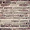 社会不適応……その当事者と支援者との間に横たわる「壁」