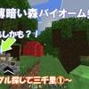 【マイクラ】初!ダークオークの薄暗い森バイオーム発見! ~ジャングル探して三千里①~ #47