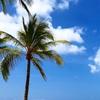 Hawaii旅行🌺part1🍍持ち物と9月の気温🌈