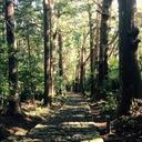 roadsamuraiのブログ