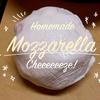 【美味しいチーズが食べたくて】自家製モッツァレラチーズを作ってみたら簡単お得で美味かった❤︎