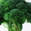 ブロッコリーにはうつ病に効果があるらしい ブロッコリー生産量NO1は北海道! おいしいブロッコリー料理を紹介