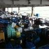 気仙沼の魚市場、サンマが揚がったけど、写真はカツオ