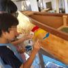 美瑛の丘のおもちゃ屋さん「カヌー作り」最終回