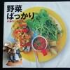 野菜ばっかりのレシピ本