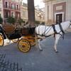 ポルトガル、アンダルシアを訪ねる24日間の旅 その7