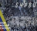 【渋谷】安くて通いやすさ抜群の英会話学校おすすめ厳選7校