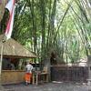 【インドネシア旅 #5】こんな学校あるの!? 多国籍な生徒が通うバリ島グリーン・スクール