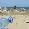 海外の反応「フランスがプラスチック製品を全面廃止へ」