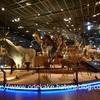上野 国立科学博物館(科博)