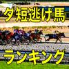 逃げ馬予想【武蔵野S】距離延長で逃げやすい舞台ラインシュナイダー|2018年