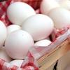 卵は完全栄養食品である!!〜白身と黄身で違いはあるのか!?〜