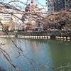 【散歩】横浜から数十分歩いたらどこまで行けるのか