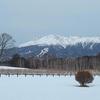 雪景色の御嶽山(御岳山)・2021年2月12日