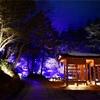 草津温泉旅行。西の河原公園と湯畑周辺の夜の様子。