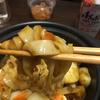 松屋とすき家のカレー 風邪の時はすき家のカレーでアレンジカレー麺