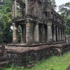 アンコールワット個人ツアー(181)アンコール世界遺産の大回りコース プリアカン寺院