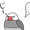 文鳥との朝の出来事/YouTubeを更新しました(文鳥編)