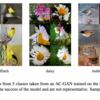 Auxiliary Classifier GAN(概要の把握)|DeepLearningを用いた生成モデルの研究を俯瞰する #1