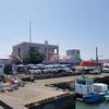 【行ってみた】大井川港朝市、駐車場、イベント、行列情報
