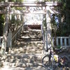 多摩川へ 一昨日は羽村取水場(+阿蘇神社)、今日はガス橋までピストン