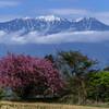 八ヶ岳山麓から-2017GW #3