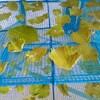 『冷蔵庫の整理に』超簡単!家庭菜園で作りすぎた野菜は干すべし!!