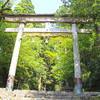 森と苔が記憶している中世の「まほろば」巨大宗教都市 & 秘湯を守る会「白山温泉」:御朱印:平泉寺 白山神社/北陸Tour❸