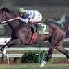 最強牝馬、ヒシアマゾン