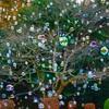GXRスナップ: バブル オーナメント